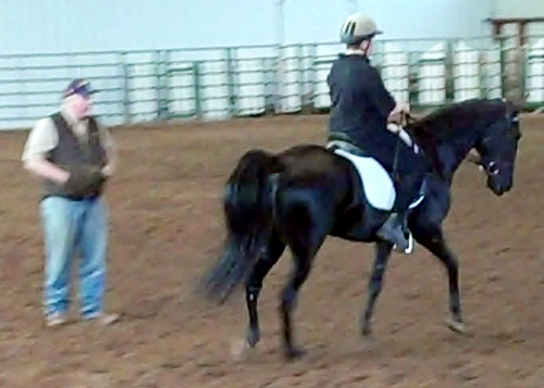 2011 BLESS Your Walking Horse Clinic with Bucky Sparks